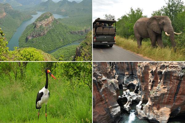Crowned Eagle Tours & Safaris