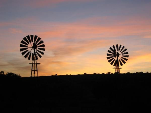 Windmills with Alan Tours