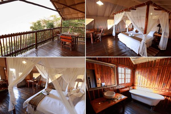 Luxury Tree Top Tents Accommodation