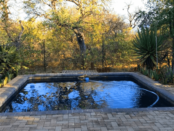 Swimming pool at Raptor's Lodge