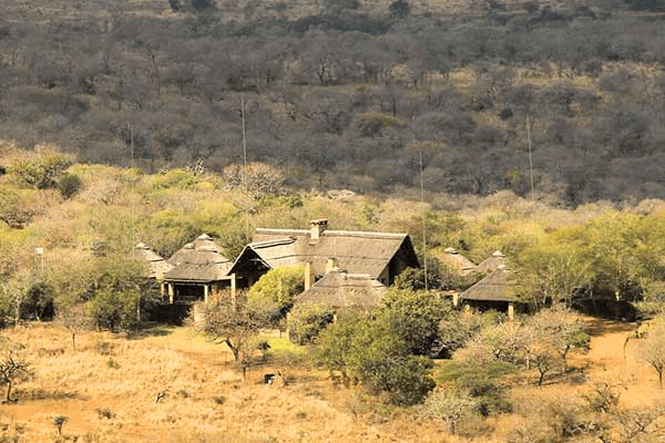 Thanda Safari Flight