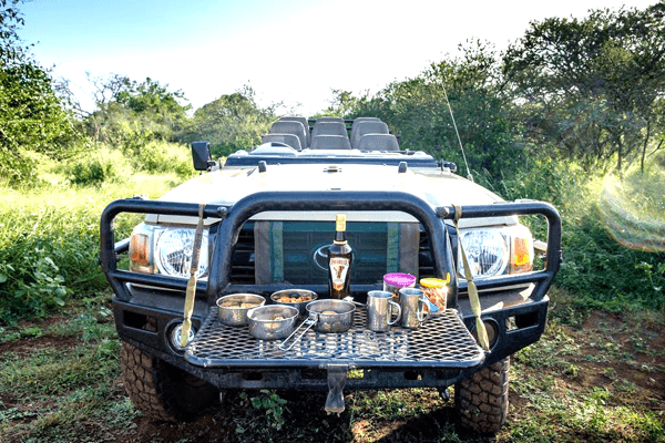 Safari at Mavela Game Lodge