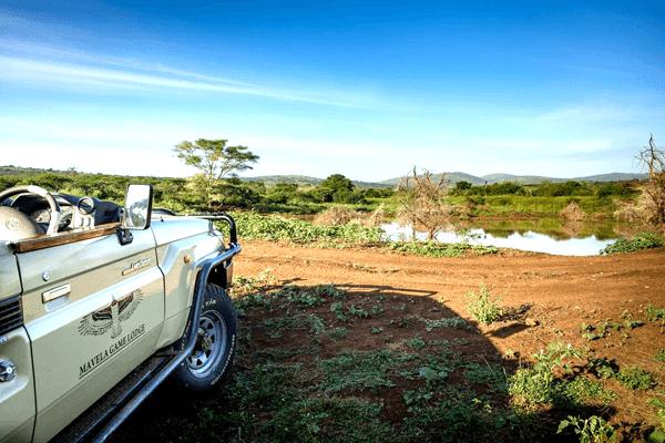 Safaris at Mavela Game Lodge