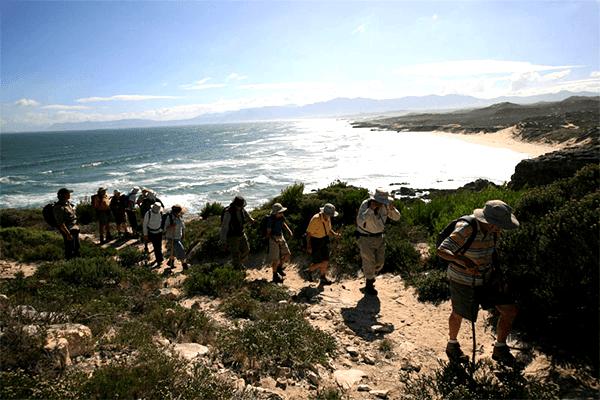Fynbos & Coastal Hiking Trails