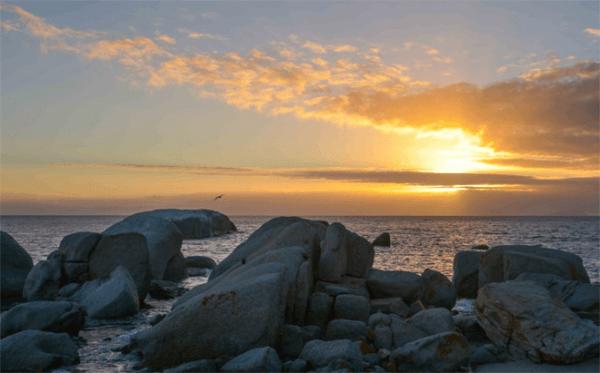 Ocean view at The Milestone