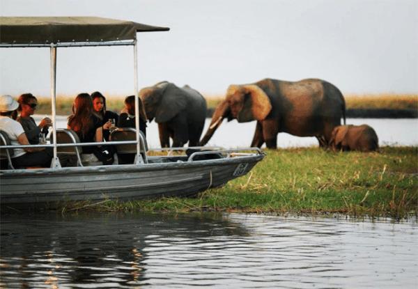 Elephants with Ultimate Adventures