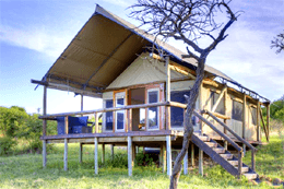 The Springbok Lodge