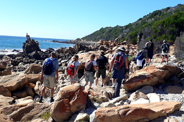 Oystercatcher Trail - A love affair with nature