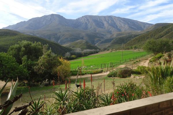 Views at Oudemuragie Guest Farm