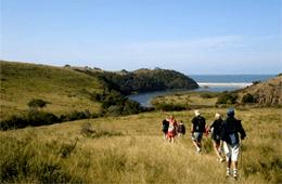 Wild Coast Hikes