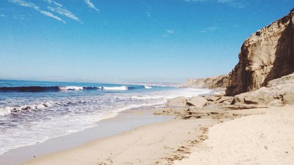 Beach walks with Reynolds Travel Centre