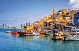Malek Travel & Tours