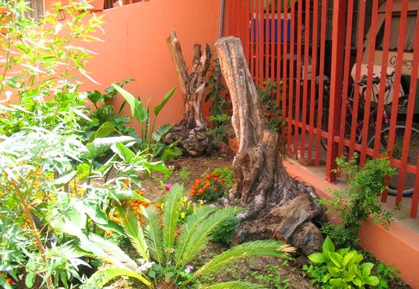 Jorene's Guest House Garden