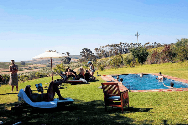 Swimming pool at Fynbos Estate