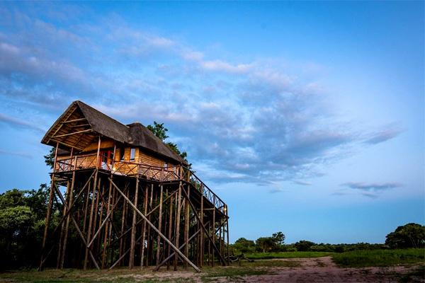 Pezulu Tree House Lodge