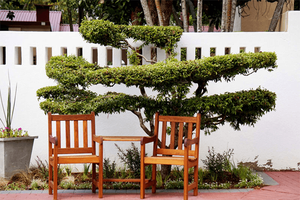 Garden chairs at Mbombela Holiday Resort and Spa